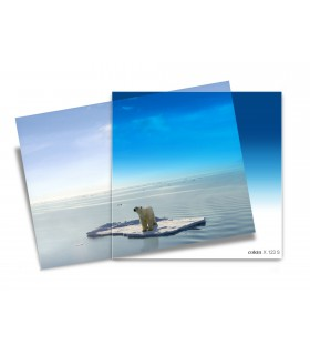 Cokin X-Pro Series Gradual Blue B2-Soft Filter X123S