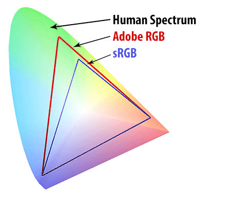 Human-Spectrum-vs-sRGB-vs-Adobe-RGB
