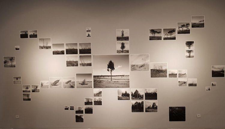 درباره منظره، نمایشگاه مهران مقیمی در گالری ایرانشهر